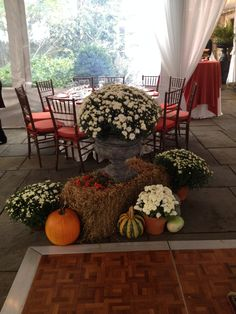 fall decor under the tent Fox Wedding, Red Fox, Fall Decorating, Special Events, Tent, Thanksgiving, Joy, Autumn, Holidays