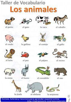 Animals in Spanish -Los animales- Spanish vocabulary A1
