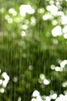 Mia cara... piove e siamo insieme anche se fa male... ma presto sarà primavera... la pioggia farà tornare il verde... presto... è un arrivederci... a dei segni o qualcosa di più in primavera... ti voglio bene...