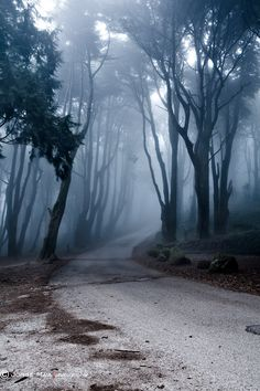 The last road by Jorge Maia on 500px