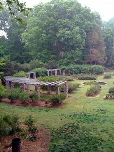 Raleigh Rose Garden - photography location