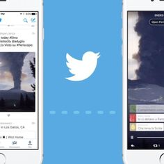 Live broadcasts and replays from video-streaming app Periscope will play directly in tweets.