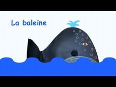 French art project: Les baleines