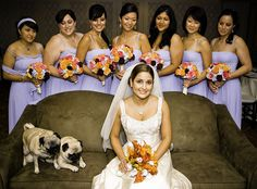 "Wedding, Weddings, Bride, ""Bridal Party"", ""Wedding Photography"" by smoothdude, via Flickr"