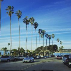 San Diego #tb