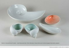 ted muehling - shells