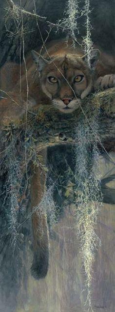 John Seerey-Lester Treed I love this