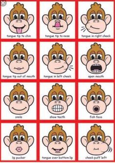 Product samples for MagneTalk Oral-Motor Exercises Looks like good exercises to practice before speech therapy. Articulation Therapy, Speech Therapy Activities, Speech Language Pathology, Speech And Language, Toddler Speech Activities, Speech Therapy Posters, Articulation Activities, Play Therapy, Oral Motor Activities