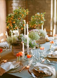 Kumquat trees and lavender line the tables