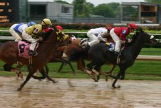The KY Derby takes place at Churchill Downs during the first Saturday in May. Photo by: Jarrett Campbell What Injuries do the Jockeys face during the derby? Kentucky Derby, Louisville Kentucky, Louisville Airport, Derby Horse, Churchill Downs, Thing 1, American Quarter Horse, Derby Day, Derby Time