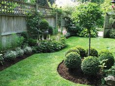 Landscaping for Backyard Fence