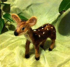 cute! Another Fawn!