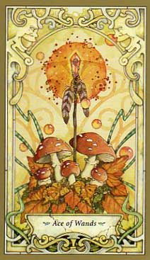 Mystic Faery Tarot by Linda Ravenscroft - Ace of Wands card - love the mushrooms and the faces in the corners