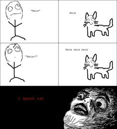 I talk to my cat all the time.
