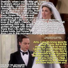 42 Ideas for wedding vows that make you cry funny haha – funny wedding ideas The Big Theory, Big Bang Theory Funny, Big Bang Theory Quotes, Funny Wedding Vows, Wedding Humor, Wedding Stuff, Wedding Ideas, The Big Bang Therory, Sheldon Amy