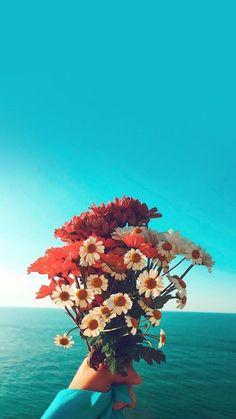 λουλουδια-I love tul. Iphone Wallpaper Bright, Floral Wallpaper Phone, Flower Background Wallpaper, Sunflower Wallpaper, Tumblr Wallpaper, Flower Backgrounds, Nature Wallpaper, Nature Photography Quotes, Floral Photography