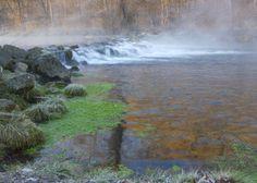 Bennett Spring State Park | themissusdoctor.com
