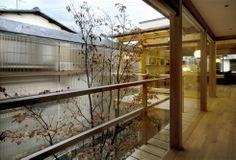 北中庭の家|横内敏人建築設計事務所