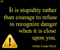 It is stupidity rather than courage to refuse to recognize danger when it is close upon you.- Arthur Conan Doyle