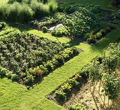 [plots+better+home+and+garden.jpg]