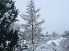 Der Winter ist wieder da