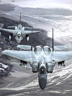 US Air Force, What a war bird. I wrenched as a jet engine mechanic for many years on F-15s.