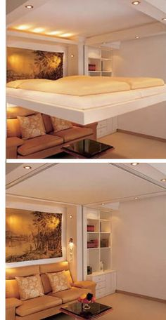 This would be great for a guest room-Elevator bed... stores in the ceiling.