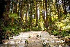 Nestldown - 12 Redwood Wedding Venues in the Bay Area — Tip Top Planning Redwood Forest Wedding, Forest Wedding Venue, Wedding Spot, Wedding Costs, Perfect Wedding, Destination Wedding, Dream Wedding, Woodland Wedding, Wedding Wishes