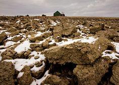 Plowed Field ✵ Terre labourée
