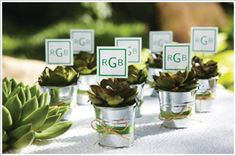 Silver Pail Favors. Fill silver pails with succulents, surround with moss and finish with decorative ribbon and twine.