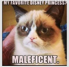 Excuse me Grumpy Cat but she is The Mistress of All Evil and she is higher ranking than any princess who fall asleep halfway into the movie. -CJM
