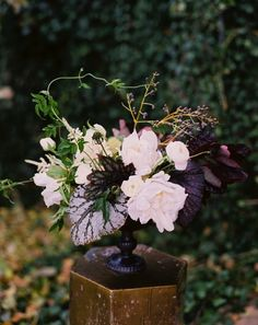 a more dramatic arrangement with deep purple foliage.