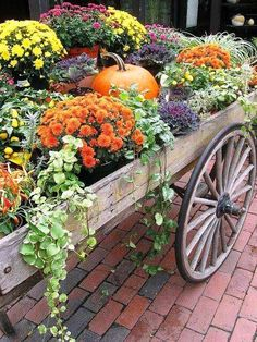 A wagon full of autumn flowers...love love love mums and pumpkins!!!