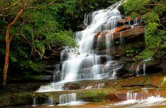 Brisbane Water National Park, Australia.
