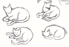 Drawing Poses, Drawing Tips, Drawing Reference, Drawing Sketches, Animal Sketches, Animal Drawings, Tracing Art, Sketches Tutorial, Drawing Studies