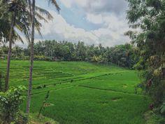 Bali. Selalu memiliki tempat yang tak terduga. Unexpected places.