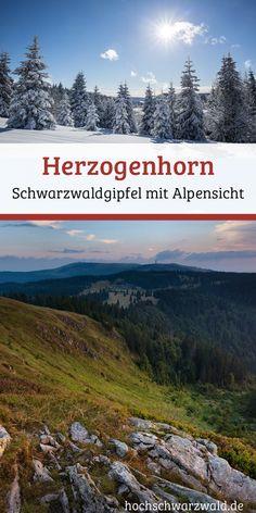 Das Herzogenhorn ist ein wunderschöner Gipfel im Schwarzwald mit Aussicht auf den Feldberg und auch bis zu den Alpen. Perfekt zum Wandern, Radfahren oder auch im Winter zum Langlaufen und Rodeln.