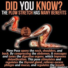 Plow stretch