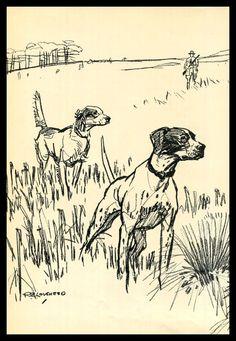 Pointer Hunting Dog Print Sketch, R E Lougheed, Vintage Dog Illustration, Dog Sketch, Wall Decor, Hunter and Dogs