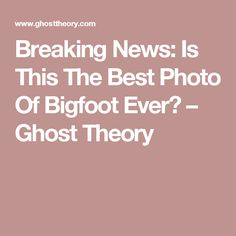 Breaking News: Is This The Best Photo Of Bigfoot Ever? – Ghost Theory