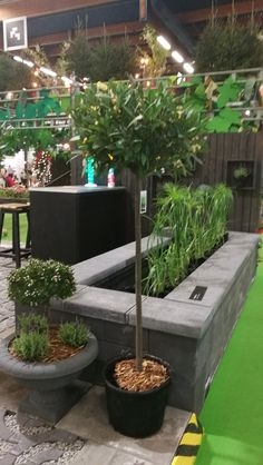 Puutarhamessut Helsingissä 2019 Lifestyle, Garden, Plants, Garten, Lawn And Garden, Gardens, Plant, Gardening, Outdoor