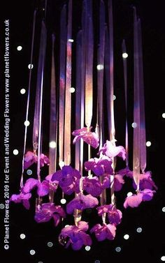 hanging orchids - link to planet flowers, event staging with impressive pictures