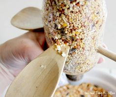 Taking Care Of Backyard Birds This Winter: Make A Simple Diy Bird Feeder