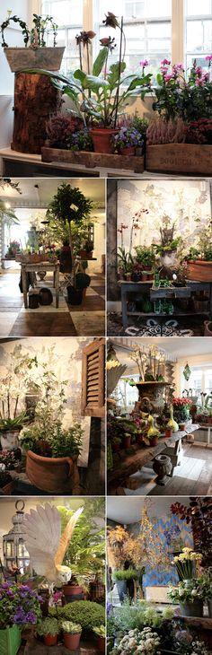 INDOOR GARDEN & BLOOMS :: Twig florist shop in Tetbury, UK