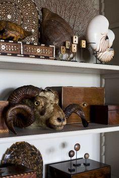 Eclectic shelf display