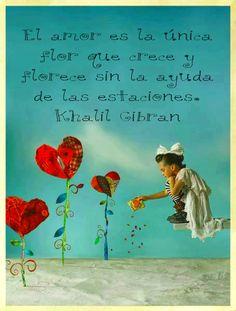 El amor es una mágica flor!..