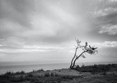 """""""Unbroken"""" (2013). © Matthew Bryan Beck Photography."""