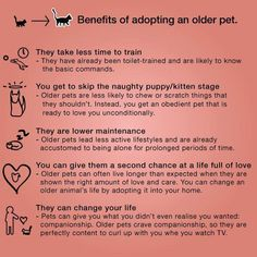 Benefits of adopting an older pet. I would also add the often their adoption fee is less and they have a harder time being adopted so you'll be helping them even more. Second Hope Circle helps special needs pets in Ontario find homes through promotion, education and funding! www.secondhopecirle.org