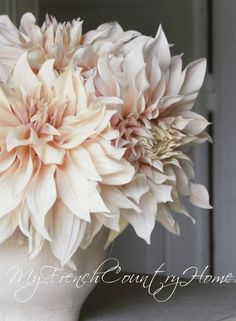 dahlias - the new peony? - MY FRENCH COUNTRY HOME