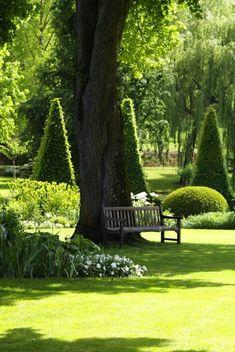 Le Parc Floral d'Apremont-Sur-Allier Alternatives to Grass for your Backyard For most, spending less is Formal Gardens, Outdoor Gardens, Parc Floral, The Secret Garden, White Gardens, Garden Spaces, Topiary, Shade Garden, Dream Garden